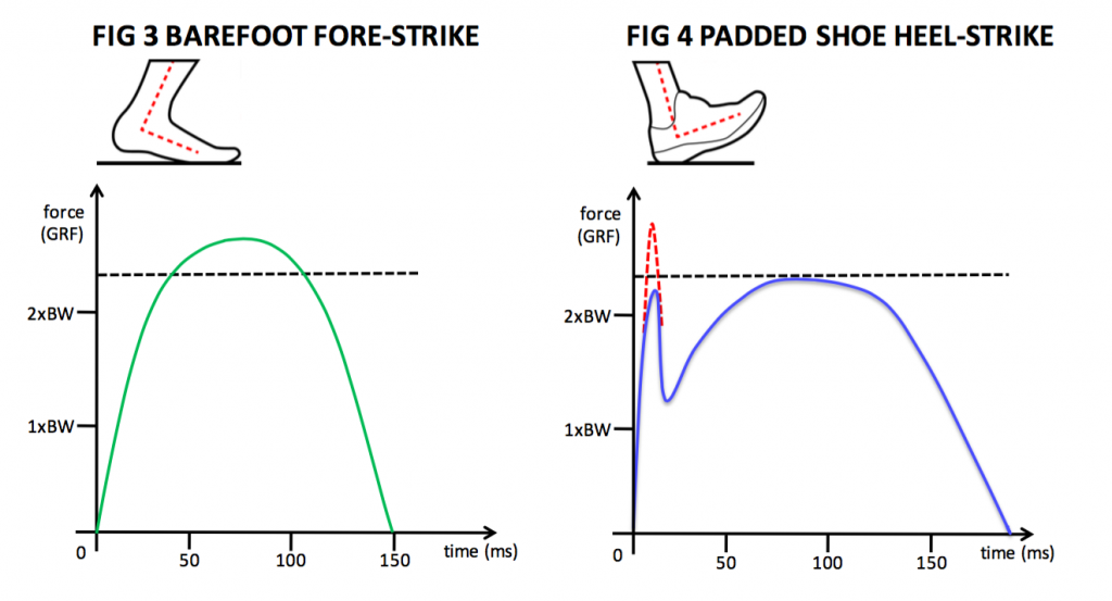 force-time-curve-fig3and4